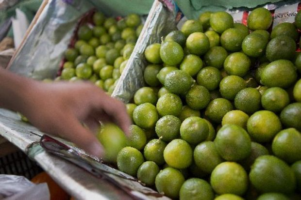 Limes are Squeezing Out Profits on Cinco de Mayo